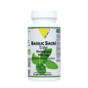 Basilic Sacré Bio VIT'ALL+