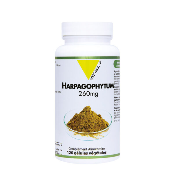 HARPAGOPHYTUM (RACINE) 260MG